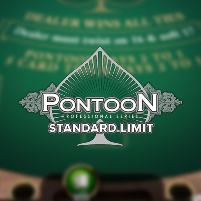 Pontoonpro standard