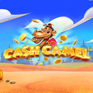 300x300 cashcamel