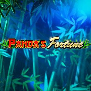 300x300 pandasfortune