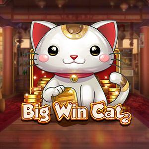 300x300 bigwincat