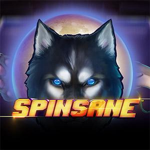 300x300 spinsane