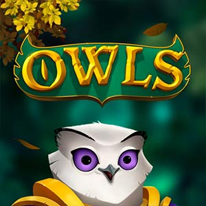 Supercasino  game thumbs 300x300 owls